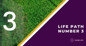 Life Path Number 3: What You Need To Know