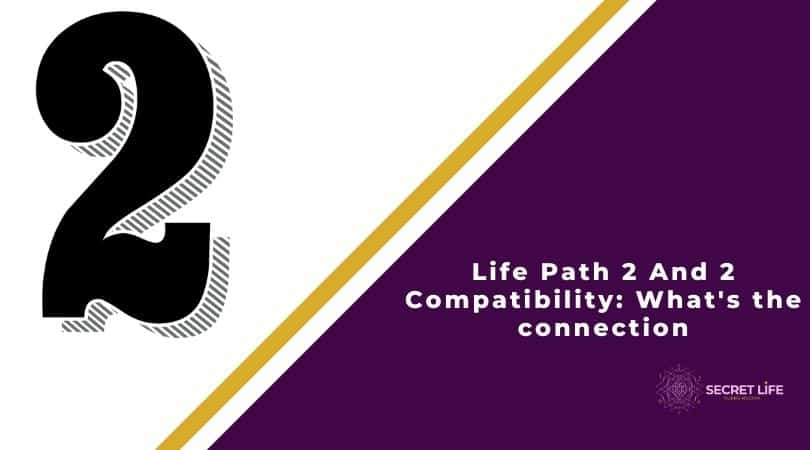 Life Path 2 And 2 Compatibility: What's the connection Image