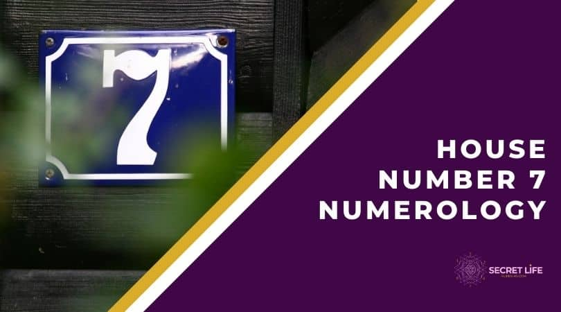 House Number 7 Numerology: All What You Need To Know Image