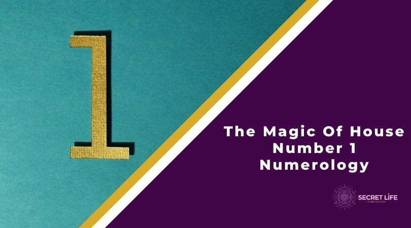 House Number 1 Numerology Image
