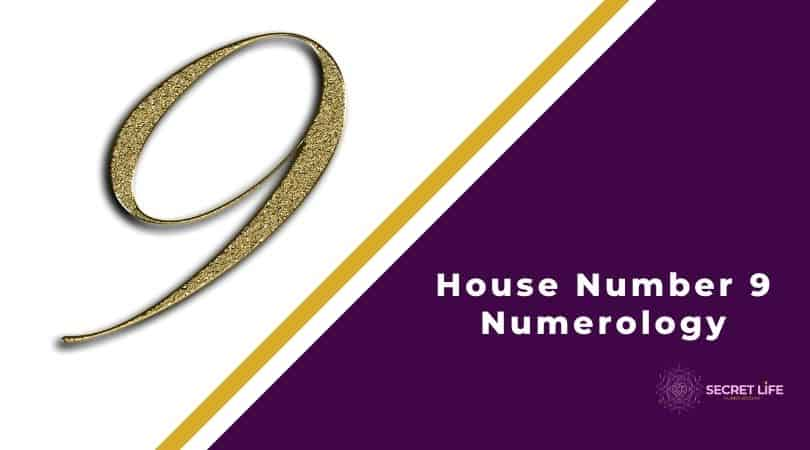 House Number 9 Numerology Image